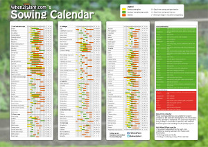 When to plant vegetables - Allotment sowing calendar, planting calendar, harvest calendar, Days sowing until germination, Days sowing until harvest, Minimum length in row, Sowing seeds