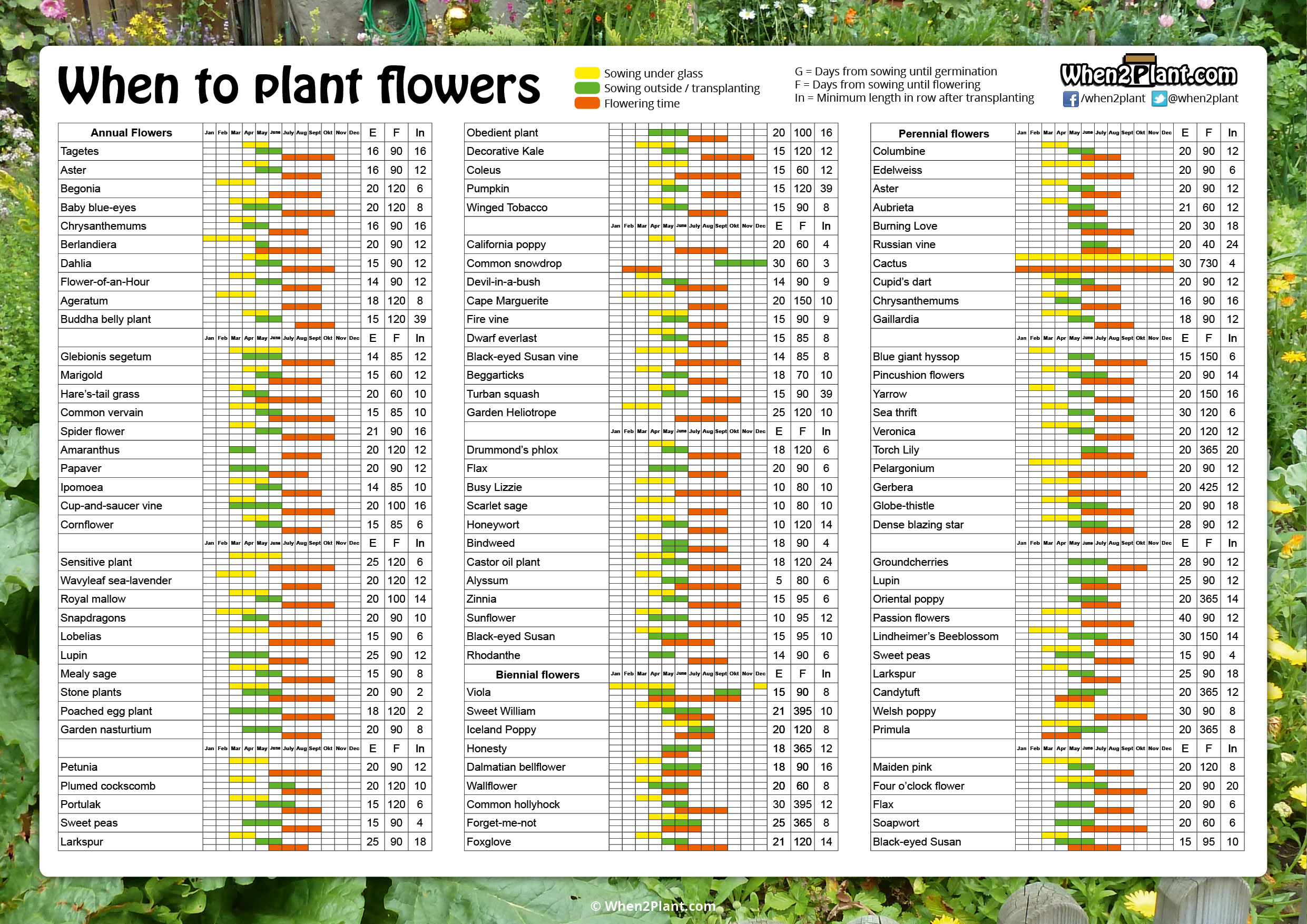 Herbs Chart When To Plant Flowers When2plant Com