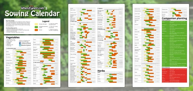 A4 3x Sowing Calendar 3xa4 When To Plant Vegetables Thumb